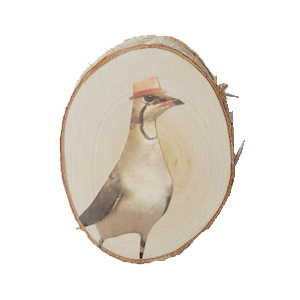 vogel3